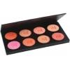 Fashion Rouge Palette 8 colours